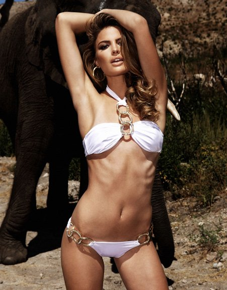 beach bunny swimwear safari glam collection scottsdale Top 7 Arizona Swimwear Stores