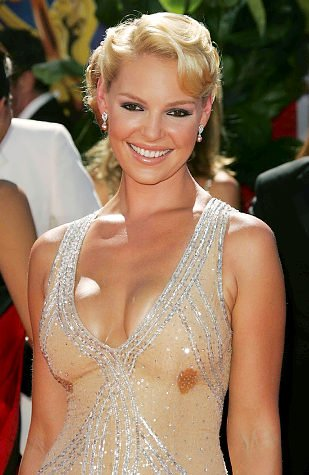 Katherine Heigl boob sweat