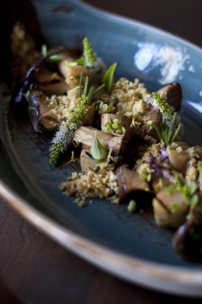 SaltRock_King Oyster Mushrooms 2